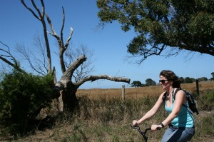 Biking on French Island