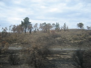 Blury fire-damaged areas on the Huma highway