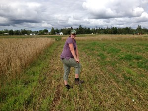 Soil sampling at 39 weeks pregnant